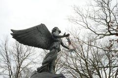 在翼的天使 图库摄影