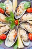 在翼的淡菜,烘烤用无盐干酪、蕃茄和韭葱在大圆的盛肉盘地中海食物 库存图片