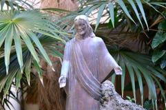 在老人棕榈下的耶稣 图库摄影