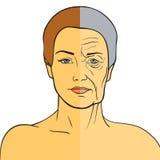 在老化前后的妇女面孔 少妇和老妇人有皱痕的 她的青年时期和晚年的同一个人 免版税库存图片