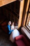 在老图书馆的典雅的婚礼夫妇 新娘和新郎常设witn在窗口附近预定 顶视图 库存图片