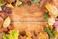 在老土气木头的秋叶框架 免版税库存图片