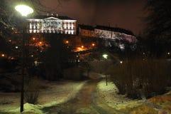 在老城市镇公园街道上的夜视图在塔林,爱沙尼亚 库存图片