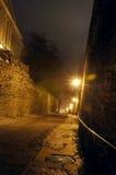 在老城市镇街道上的夜视图在塔林,爱沙尼亚 库存照片