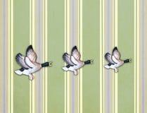 在老墙壁上的三只飞行的鸭子 库存图片