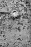 在老墙壁上的白炽光电灯泡 免版税库存照片
