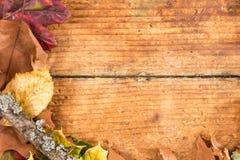 在老年迈的木头的半秋天框架 免版税库存照片