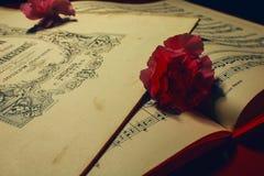 在老德国笔记的桃红色花 免版税库存照片