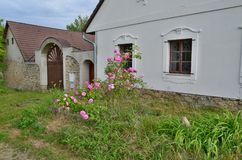 在老房子前的庭院 免版税库存图片