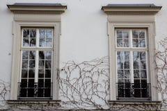 在老房子寿衣的门面的两葡萄酒设计窗口 免版税库存图片