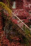 在老房子的红色墙壁,马塔莫罗斯市,长野,日本 免版税库存照片