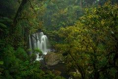 在老挝的南部的瀑布 库存照片