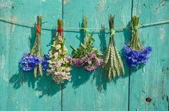 在老木墙壁上的医疗花和谷物植物束 库存图片