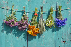 在老木墙壁上的医疗花和谷物植物束 免版税库存图片