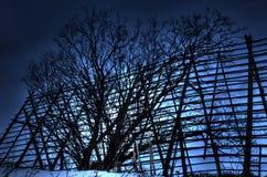 在老木干鱼结构前面的大黑暗的树silouette在黎明在北挪威 免版税库存图片