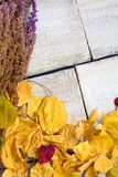 在老木桌上的五颜六色的秋叶 免版税图库摄影