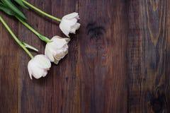 在老木桌上的白色郁金香, 免版税库存图片