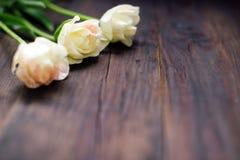 在老木桌上的白色郁金香, 库存图片