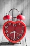 在老木的红色警钟 免版税图库摄影