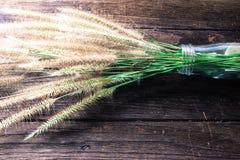 在老木的草和玻璃瓶 免版税库存图片