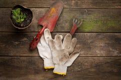 在老木背景的园艺工具 免版税库存照片