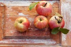 在老木背景的秋天苹果 土气样式 土气样式 图库摄影
