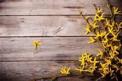 在老木背景的黄色花 库存图片