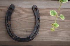 在老木表面上的钉子固定的古色古香的生锈的马掌 免版税库存照片