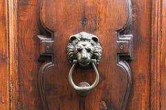 在老木门的狮子顶头敲门人在佛罗伦萨 库存图片