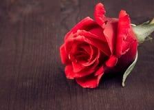 在老木头、老牌、背景、情人节和爱概念的红色玫瑰 免版税库存图片