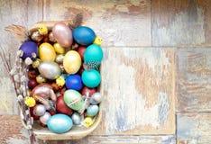 在老木破旧的桌上金属盘与绘的用与羽毛杨柳和鸡的不同的颜色复活节彩蛋 库存照片