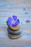 在老木头的三块禅宗石头与紫色花 免版税图库摄影