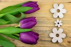 在老木头的紫色郁金香作为与木花装饰的背景 图库摄影