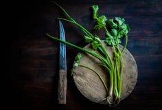 在老木头的绿色香菜 免版税图库摄影