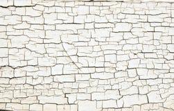 在老木头的破裂的白色油漆纹理 库存图片