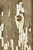 在老木头的破裂的白色油漆纹理 免版税库存照片