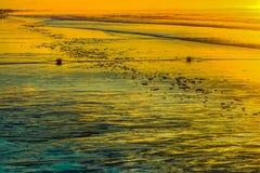 在老果树园海滩的低潮日出 库存照片