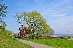 在老树中的农村房子 奈达,立陶宛 免版税库存图片