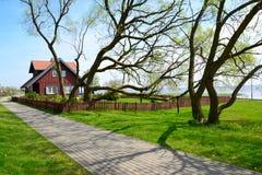 在老树中的农村房子 奈达,立陶宛 库存图片