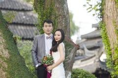 在老树和老大厦前面的中国夫妇婚礼portraint 库存照片