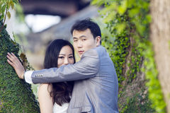 在老树和老大厦前面的中国夫妇婚礼portraint 库存图片