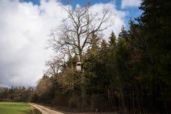 在老橡木站立的猎人 免版税库存照片
