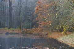 在老池塘的有薄雾的10月天 Petrovskoye,血污的Pushkinskie 俄国 库存照片