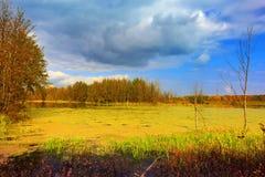 在老湖的秋天天 库存照片