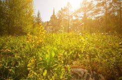 在老牌的美丽的豪宅在绿色草甸的晴朗的森林城堡在阳光下 免版税库存图片