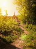 在老牌的美丽的豪宅在绿色草甸的晴朗的森林城堡在阳光下 库存图片