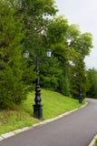 在老牌的街灯与锻铁两盏灯与卷毛的在长的腿黑色路灯柱和枝形吊灯 库存图片