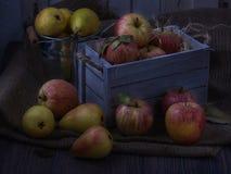在老白色葡萄酒木箱的水多的果子 红色苹果和黄色梨 低调月光02 图库摄影