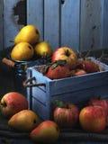 在老白色葡萄酒木箱的水多的果子 红色苹果和黄色梨 低调月光01 免版税图库摄影