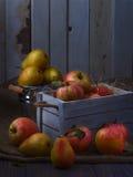 在老白色葡萄酒木箱的水多的果子 红色苹果和黄色梨 低调月光04 库存照片
